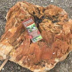 Камень для ландшафта (арт. 051)