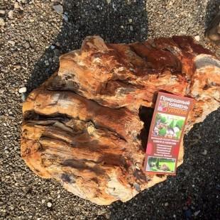 """Камень для ландшафтного дизайна """"Окаменелое дерево"""""""